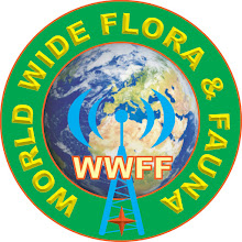 INFO despre WWFF Click pe sigla!