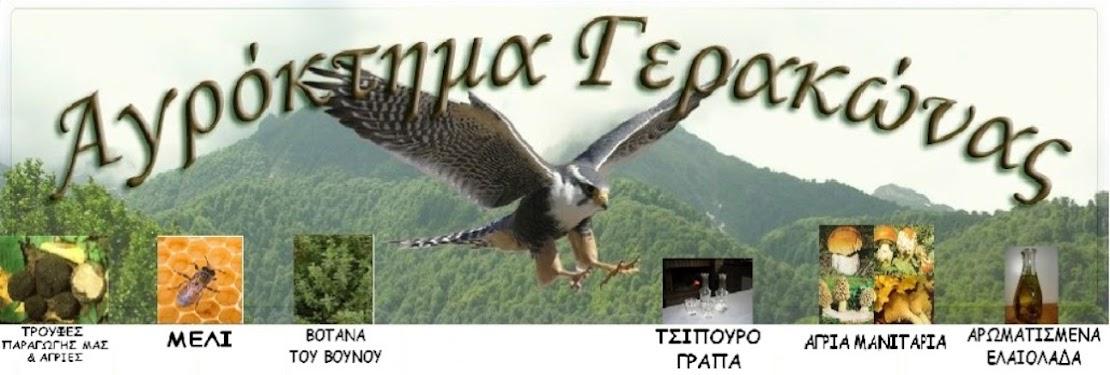 ΑΓΡΟΚΤΗΜΑ ΓΕΡΑΚΩΝΑΣ - GERAKONA'S FARM