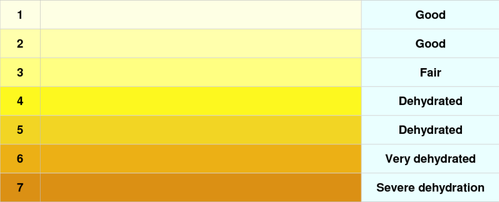 amazing world what the color of your urine says about the hidden
