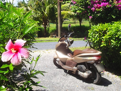 Thailand travel tips with the scooter