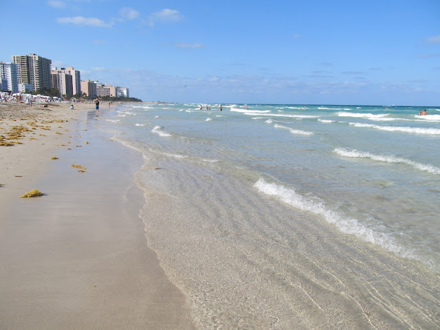 Miami Beach,miami scenery,beach scenery