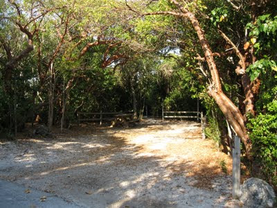 Bahia Honda State Park Tent Camp Ground