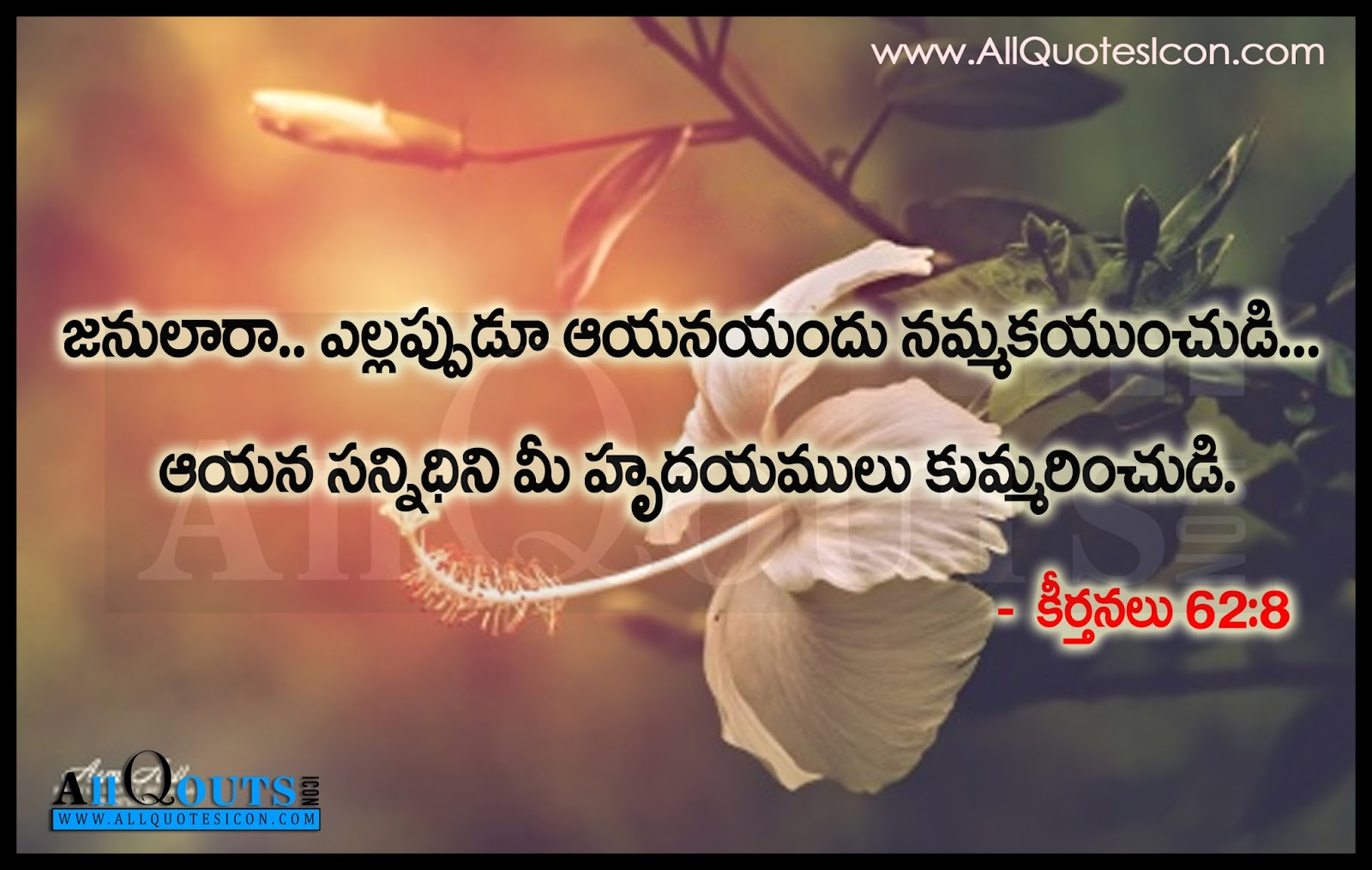 Believe Lord Jesus Sayings and Quotes in Telugu HD ...