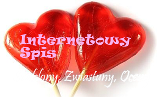 http://internetowy-spis.blogspot.com