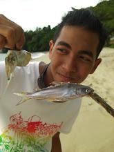sotong dan ikan c: