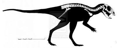 dinosaurios de Argentina Manidens
