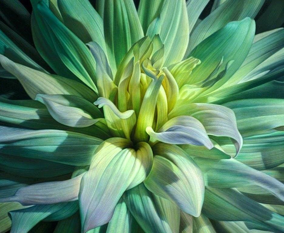 flores-pinturas-decorativas