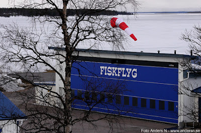 Fiskflyg