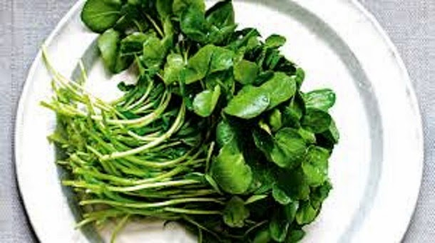 Quemador de grasa herbalife precio photo 1