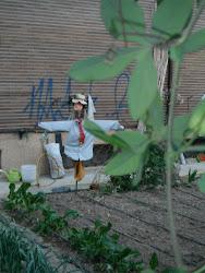 ¿Jardín Urbano Las Fuentes?