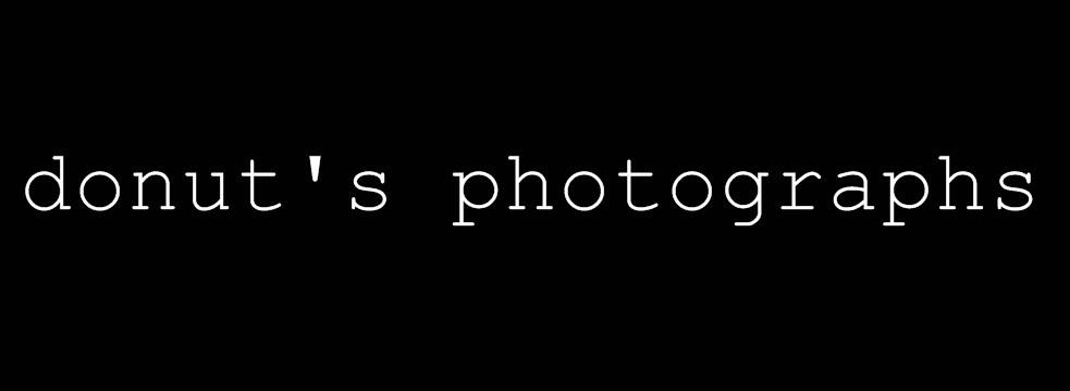 Donut's Photographs
