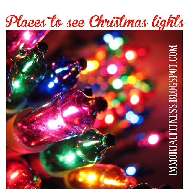 Places To Travel In December 2015: Immortal Fitness: 15 Places To See Christmas Lights In The