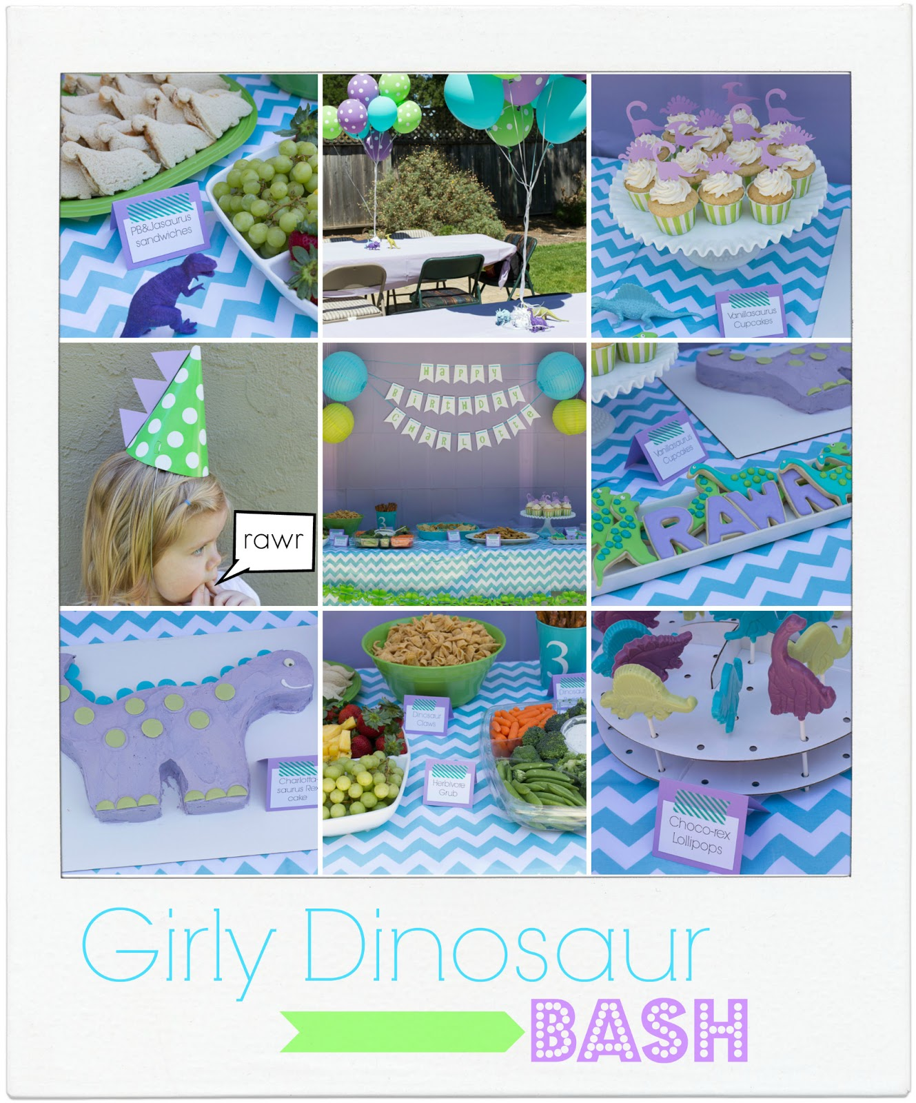 Birthday Party Charlotte Nc: Charlotte's Dinosaur Birthday Party