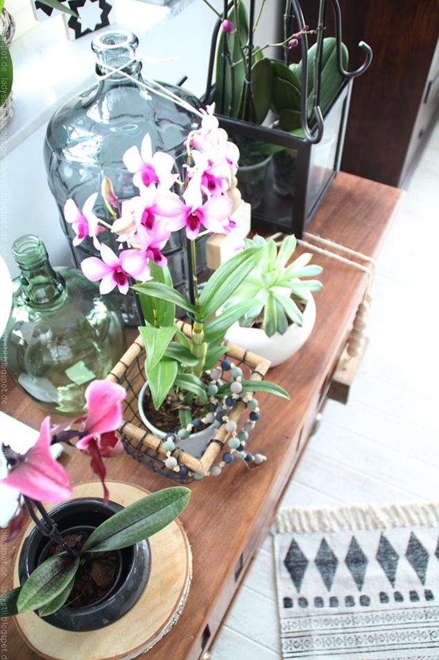 pinke Orchideen auf einer Truhe arrangiert