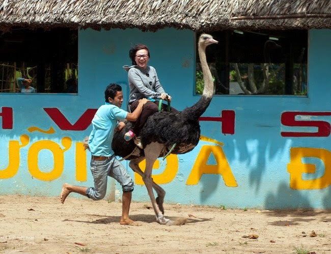 Những điểm du lịch hấp dẫn nhất tại Vĩnh Long