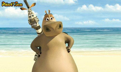Cuộc Phiêu Lưu Tới Madagascar 1349543455