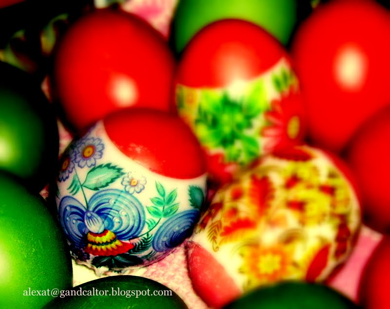 Oua colorate divers sau dupa preferinta. Various coloured Eggs by preferance. Gladly shared.
