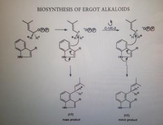 Biosynthesis of alkaloids pdf
