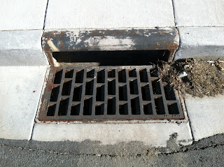 Storm Grate
