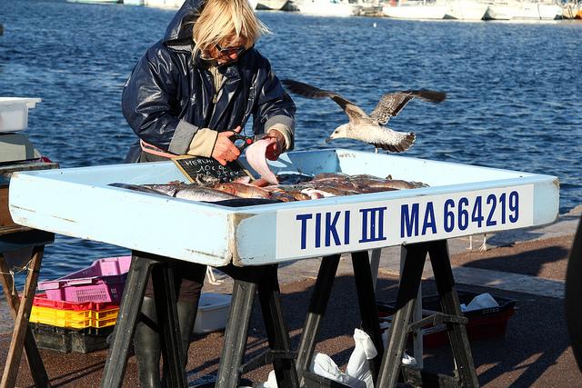 I am a mover marseille march au poisson du vieux port - Restaurant poisson marseille vieux port ...