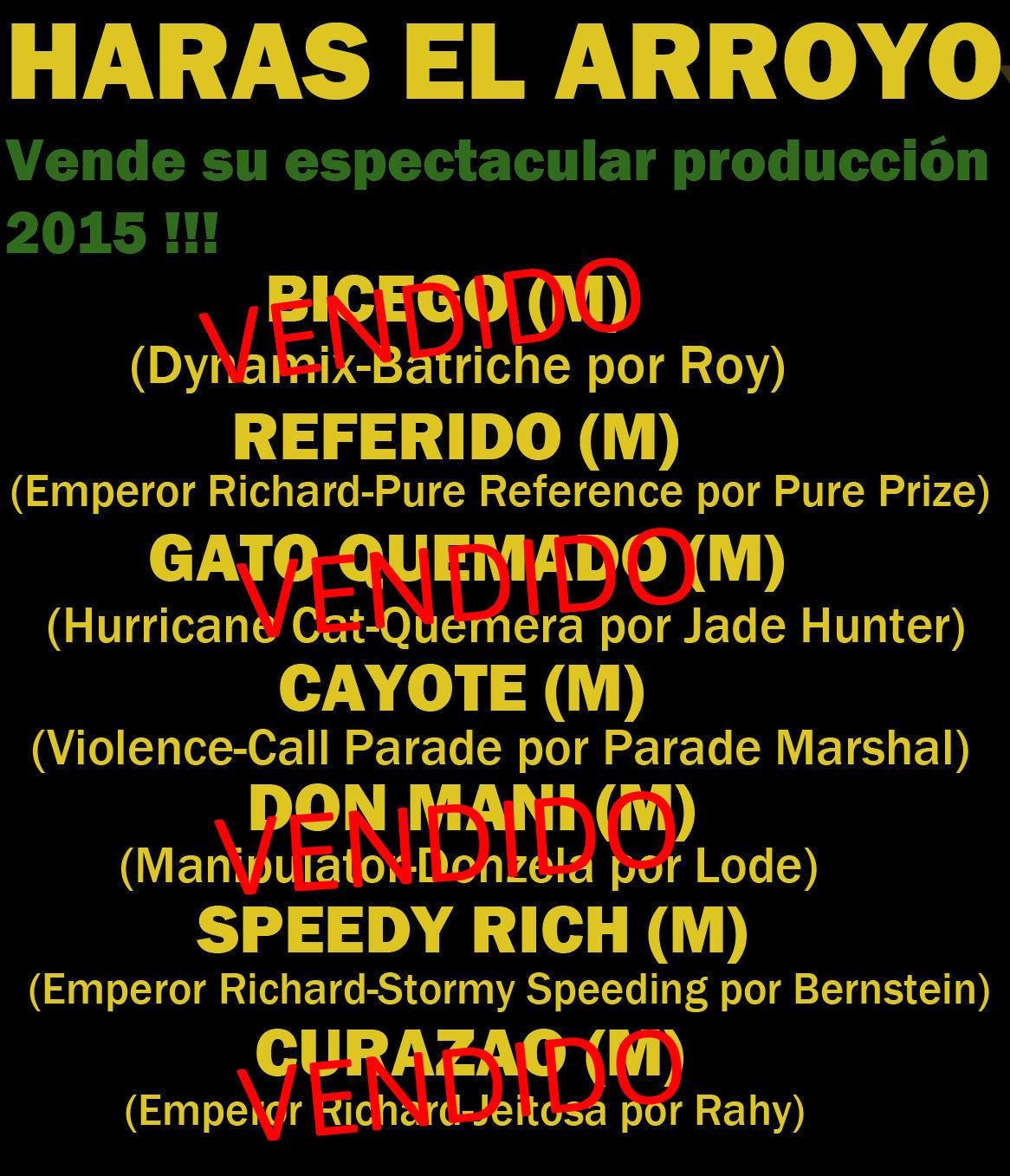 HS EL ARROYO 1