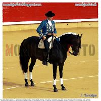 Pablo Hermoso de Mendoza el 10 de septiembre de 2013 en la Plaza de Toros de Albacete con reses de los hermanos Sampedro.