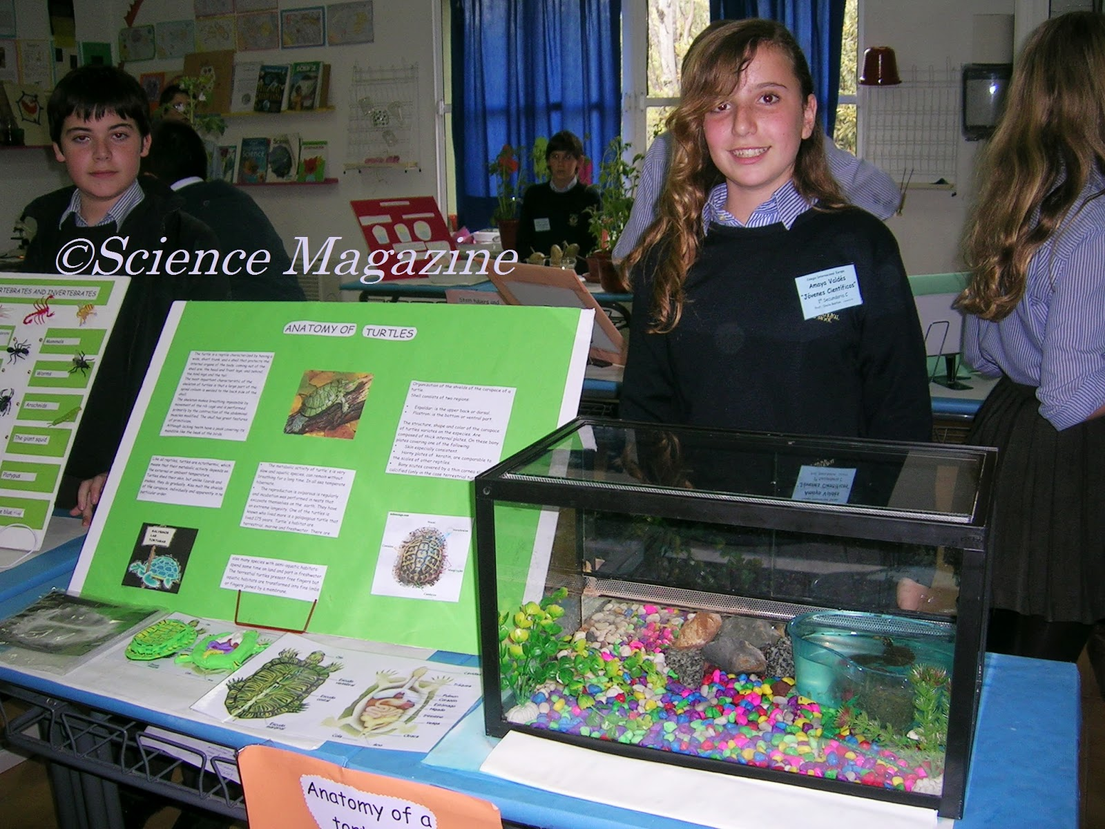 Science Magazine: SCIENCE FAIR PROJECT - TURTLES - By Amaya Valdés
