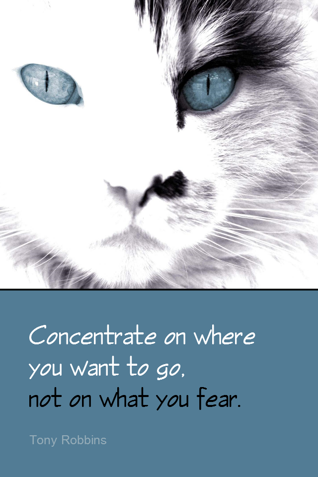 visual quote - image quotation for FOCUS - Concentrate on where you want to go, not on what you fear. - Tony Robbins