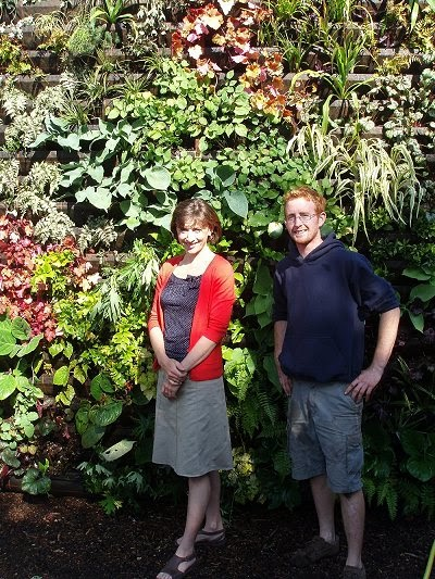 How to Build Your Own Living Wall or Vertical Garden