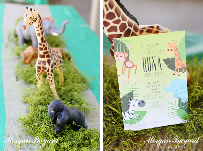 Morgan Bayard Photography New Jersey Baby Photographer Zoo Themed
