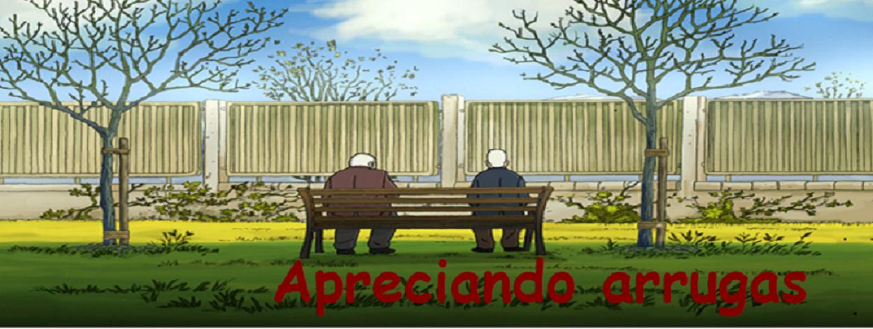 APRECIANDO ARRUGAS