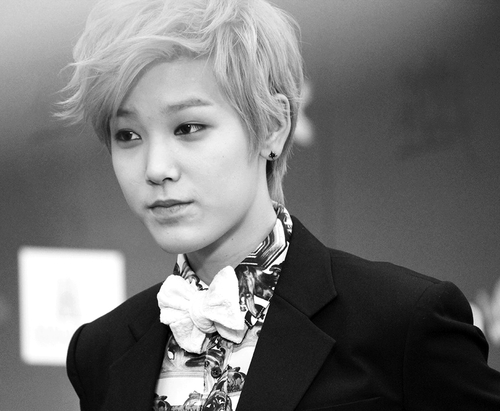 What the hell is Zelo ...
