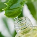The differences and benefits between Juice and Aloe Vera Gel