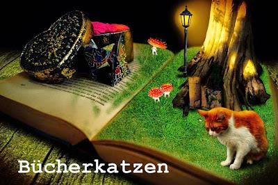 Bücherkatzen