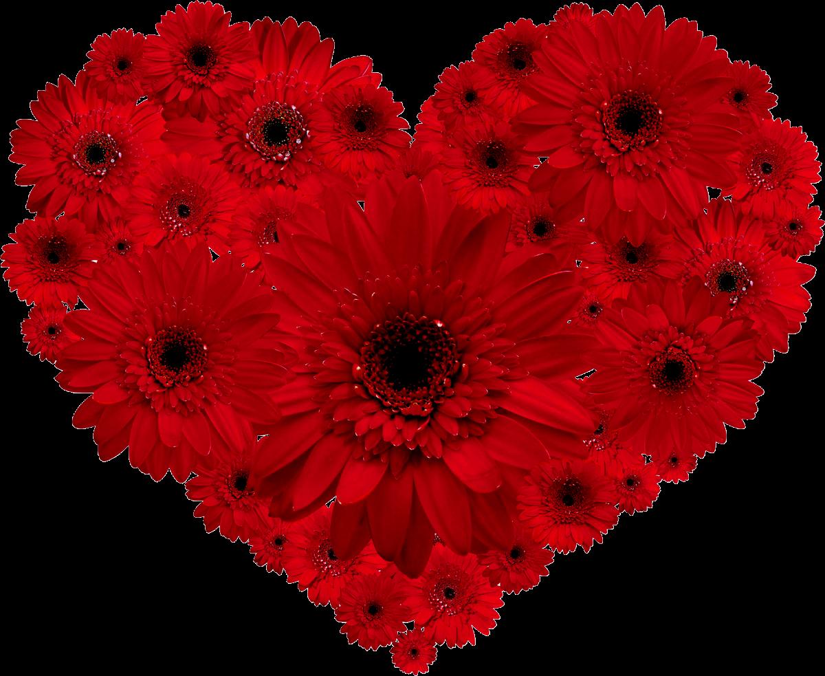 heartredflower.png