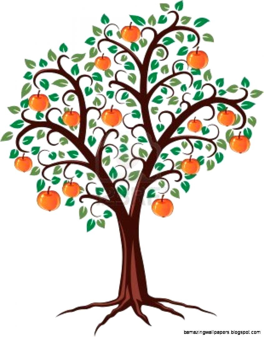 Apple Tree With Roots   ClipArt Best