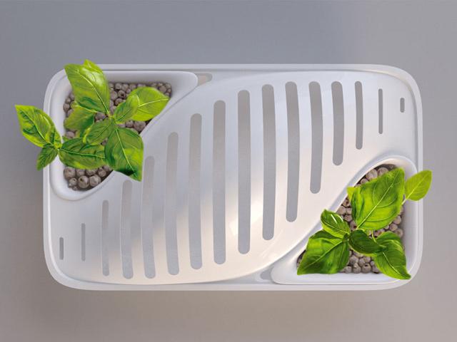 Escorredor de pratos usa água para regar plantas