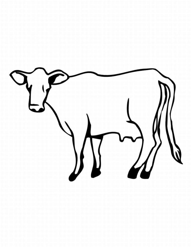 Coloriages a imprimer dessin vache - Dessin d une vache ...