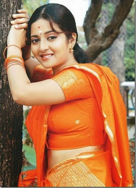 Hot Malayalam actress in sari