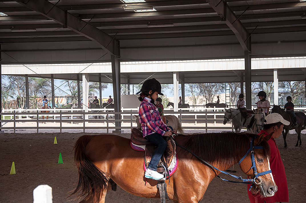 horse riding lessons essay The specific game of tent pegging has a mounted horseman riding at a gallop and using a sword or a lance to pierce,  the great noida horse show was also organised.
