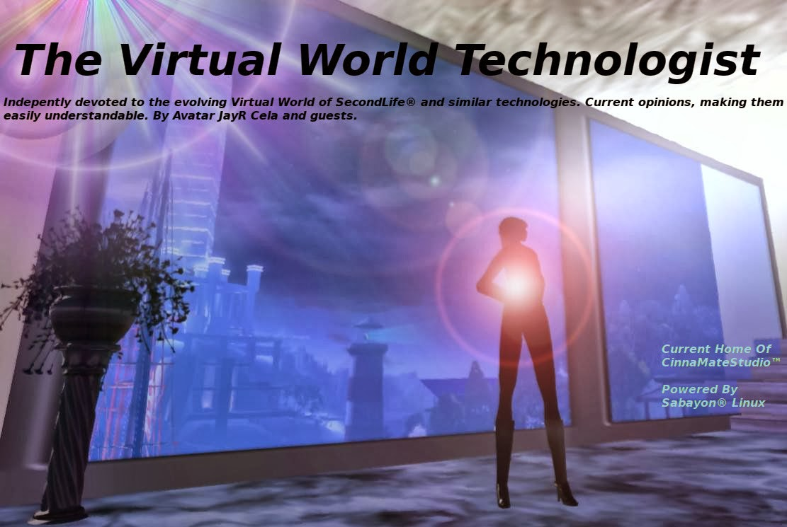 The Virtual World Technologist