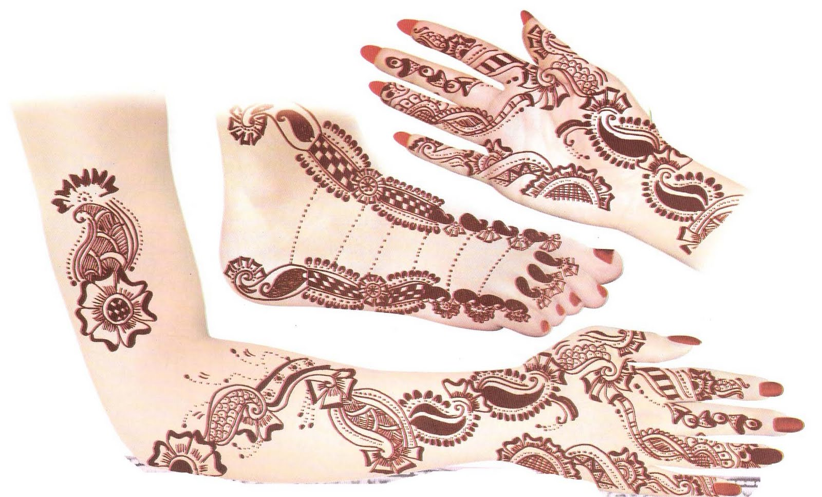 Posted by Ties at 08 58Arabic Mehendi Designs On Paper