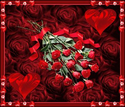 Imagenes De Rosas De Enamorados