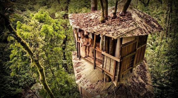 Casa de árvore