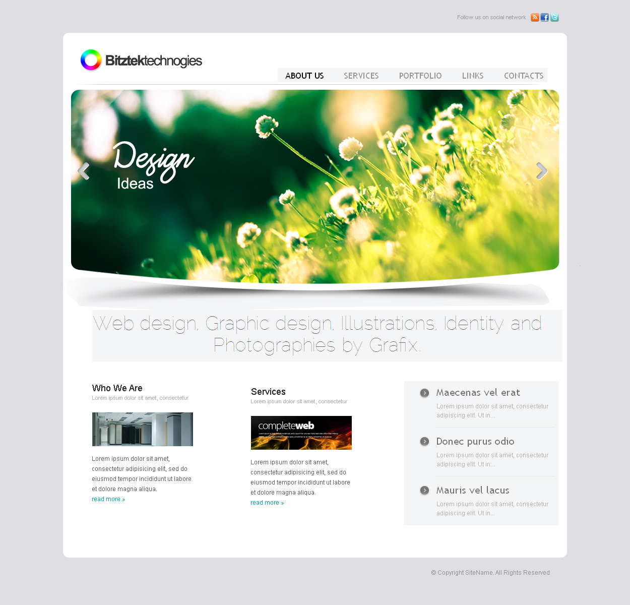 webdesign for software development and web designing company(Bitztek