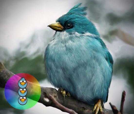 angry birds real life