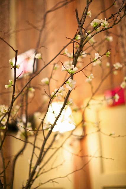 flowering branches for ceremony