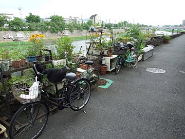 Kyoto Urban garden