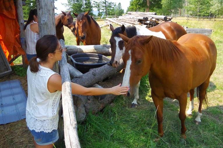 The Herd- from BTBU Blog