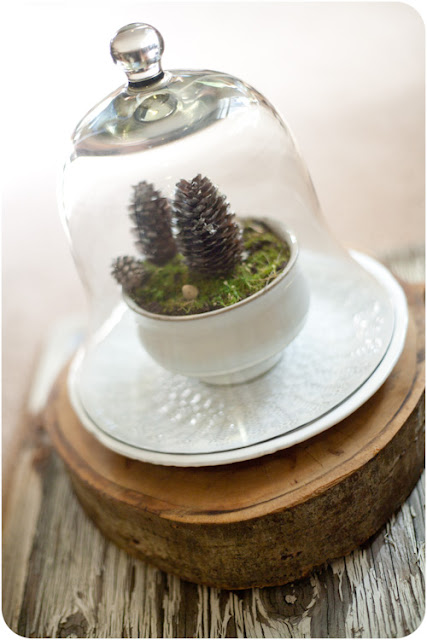WT+6 DIY Wedding Idea: Winter Landscape Centerpiece
